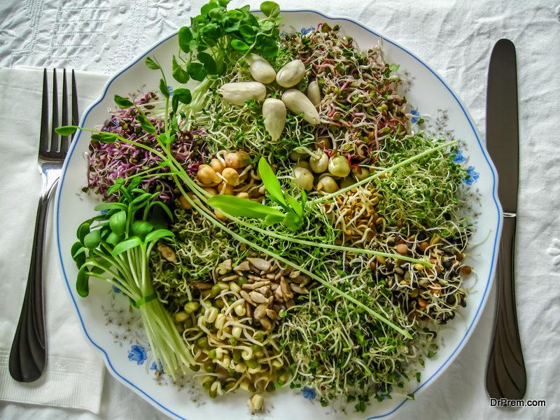 Organic-alfalfa-greens