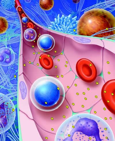 cancer cells 4767