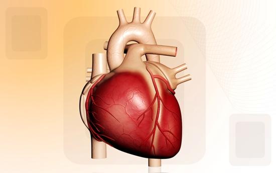 Heart disorders