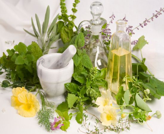 Herbal Supplements- Are They Worth It?