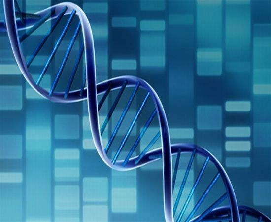 Ovarian cancer linked to multiple genetic mutations