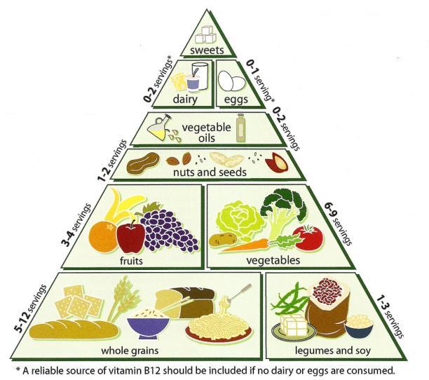 Vegitarian Diet Pyramid