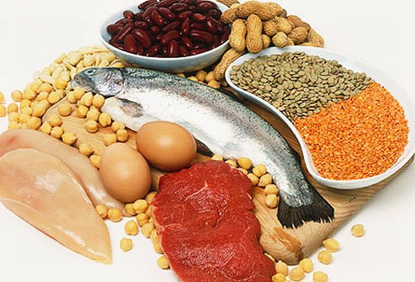 High protein sources