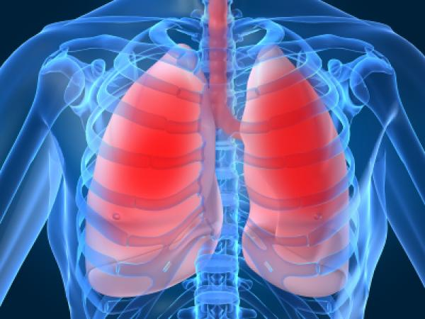 Lung diseases risk Markers