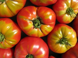 800px-End_of_Summer_Tomatoes