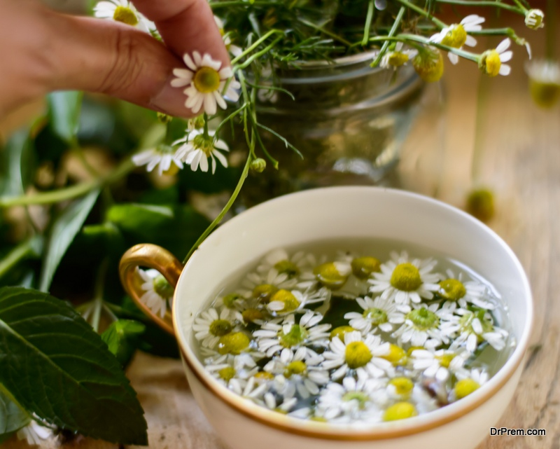 Chamomile Tea for migraine